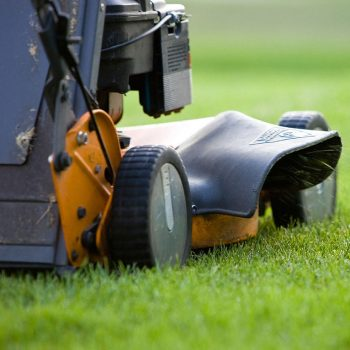 Does Hero Lawn Care Winnipeg let me choose my cutting day?