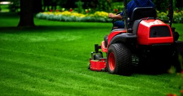 Promotion for Lawn Care in Winnipeg (Grass Cutting)